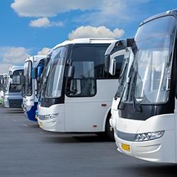 Les bus de Bacqueyrisses